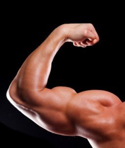 One of the Functions of Testosterone is to Build Muscle